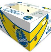 Půjčovna banánových krabic